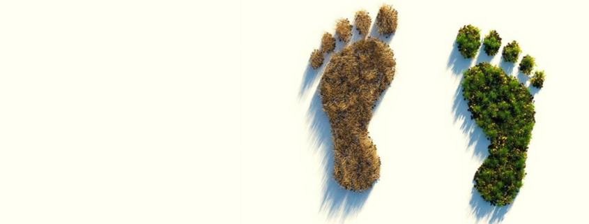footprints as a symbol for sustainable financial products